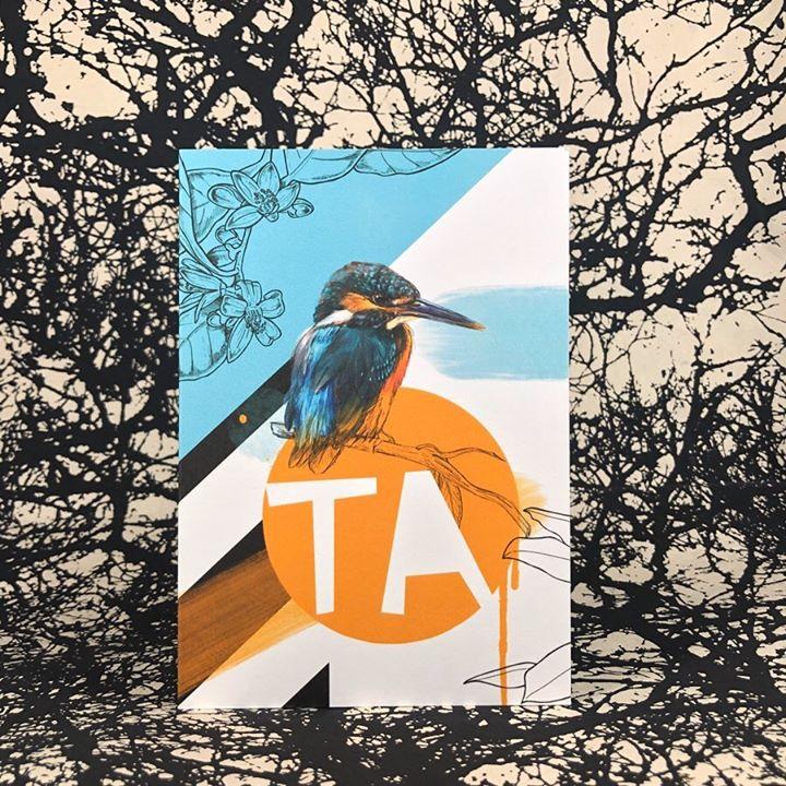 picture of Bird-Branch-Tree-Illustration-Poster-Wildlife-Plant-Beak-Graphics-33146-154647