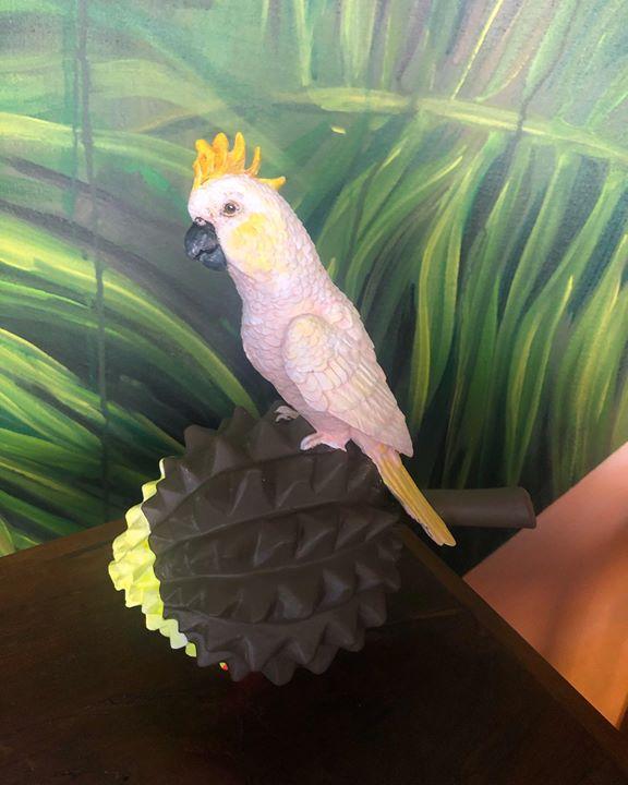 picture of Bird-Cockatoo-Parrot-Beak-Cockatiel-Wing-Sulphur-crested cockatoo-Parakeet--1549728665188280