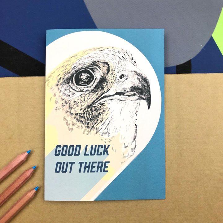 picture of Bird-Eagle-Beak-Adaptation-Room-Illustration-Hawk-Bird of prey-Drawing-1487990934695387
