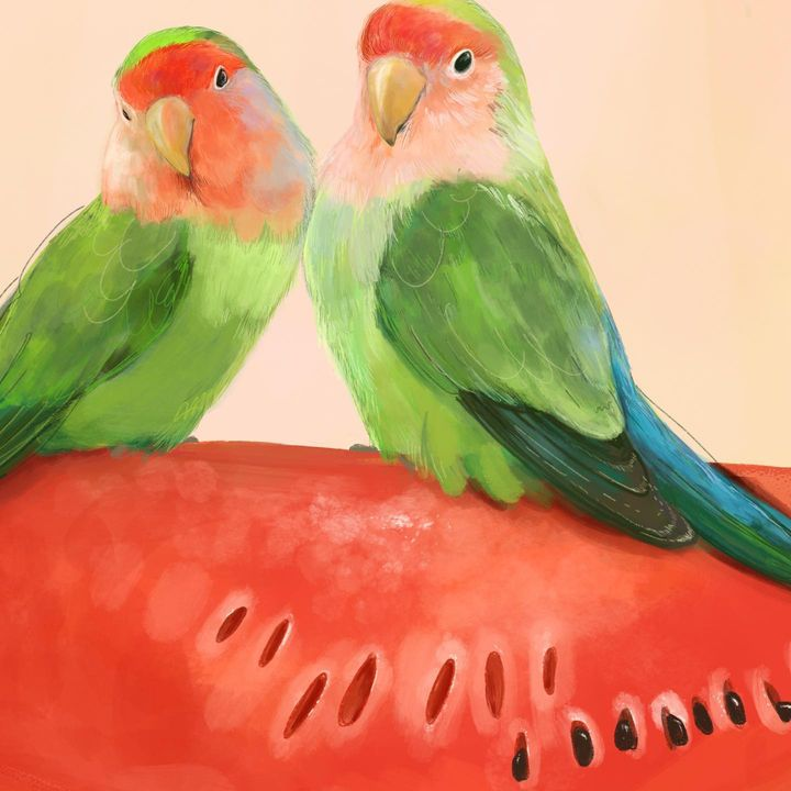 picture of Bird-Eye-Green-Nature-Parrot-Beak-Organism-Red-Feather-1899586726869137