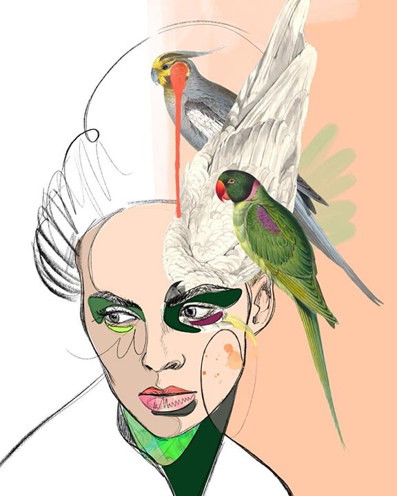 picture of Bird-Illustration-Parrot-Wing-Beak-Parakeet-Drawing-Art-Budgie-1201105653383918