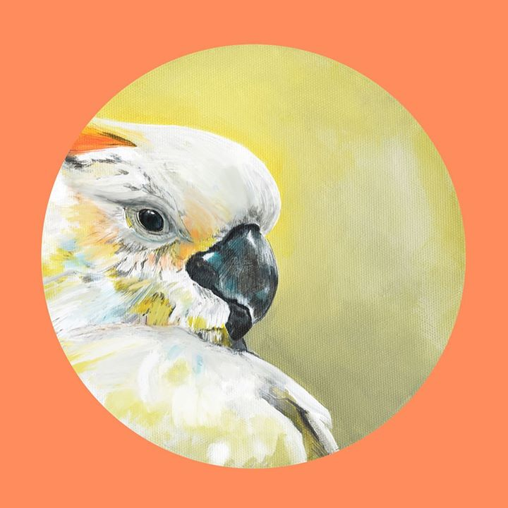 picture of Bird-Parrot-Cockatoo-Parakeet-Watercolor paint-Beak-Illustration-Cockatiel-Budgie-61422-54761