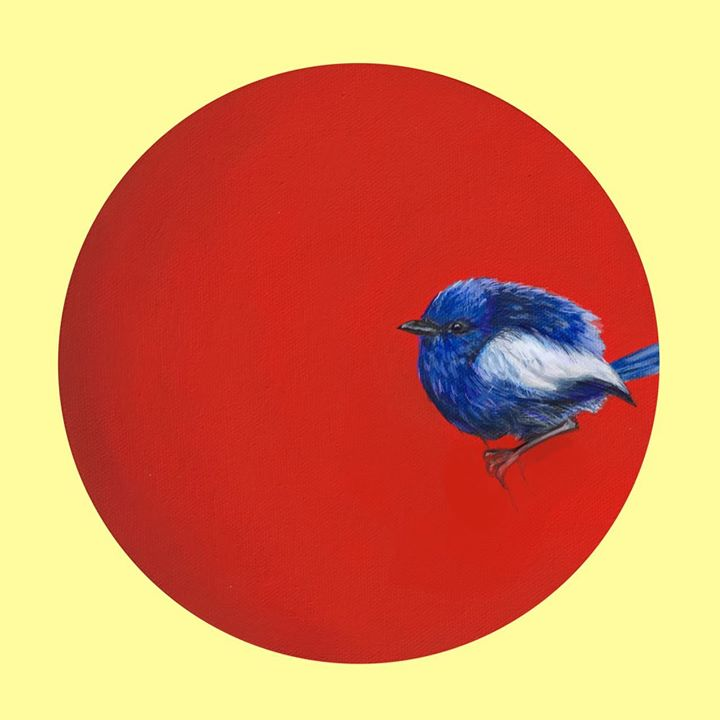 picture of Blue-Red-Bird-Illustration-Circle-Indigo bunting-Perching bird-Songbird-Bluebird-61422-35949