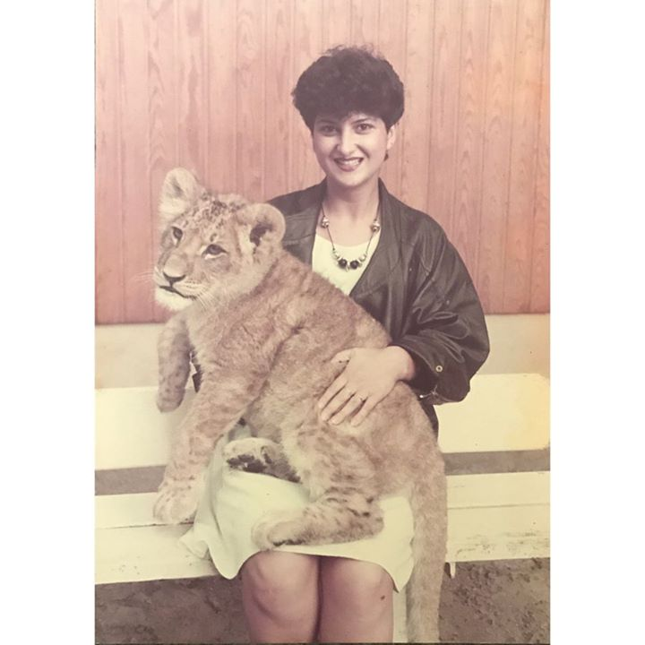picture of Cat-Photograph-Felidae-Head-Snapshot-Small to medium-sized cats-Shorts-Whiskers-Sitting-28127-50035