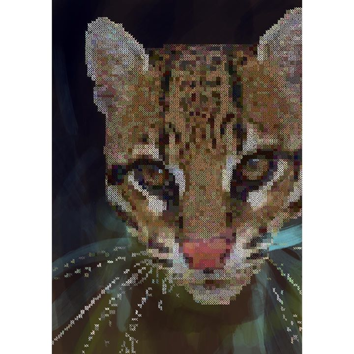 picture of Felidae-Wildlife-Small to medium-sized cats-Whiskers-Carnivore-Snout-Leopard-Terrestrial animal-Ocelot-1533116513516162