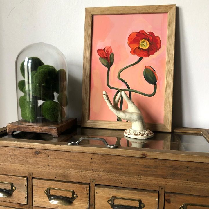 picture of Flower-Cabinetry-Picture frame-Furniture-Drawer-Plant-Wood-Dresser-Shelving-1923141431180333