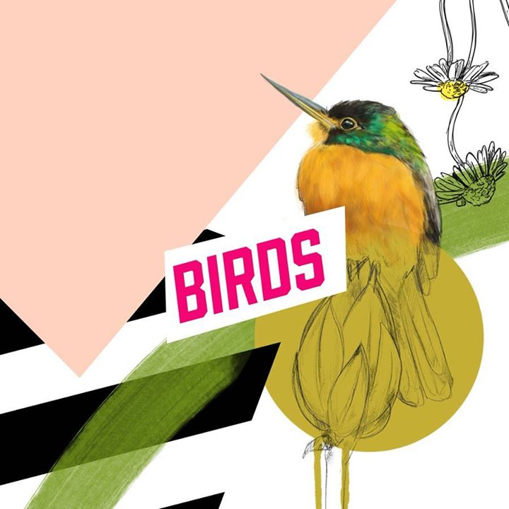 picture of Hummingbird-Bird-Illustration-Beak-Art-Graphic design-Graphics-Clip art-Wildlife-1209646402529843