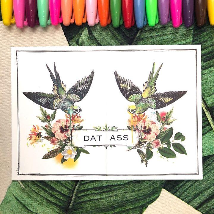 picture of Hummingbird-Botany-Plant-Flower-Font-bird of paradise-Illustration-Wildflower-Tulip-1483477885146692