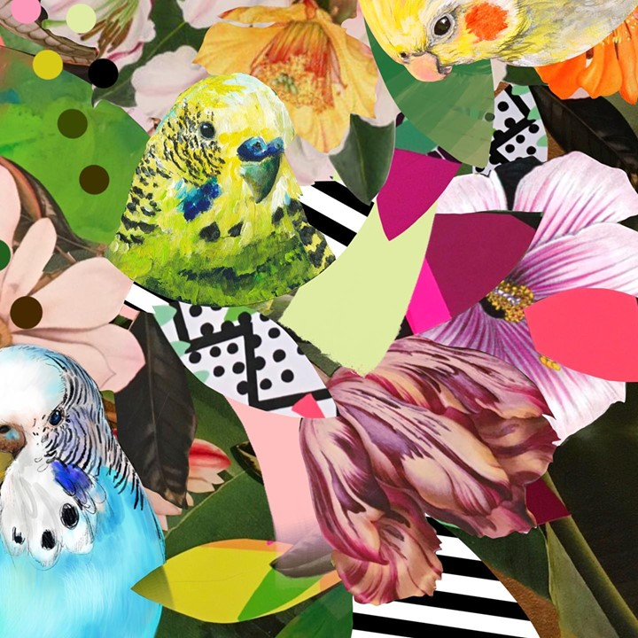 picture of Illustration-Art-Spring-Flower-Plant-Graphic design-Pattern-Collage-Wildflower-1244086749085808
