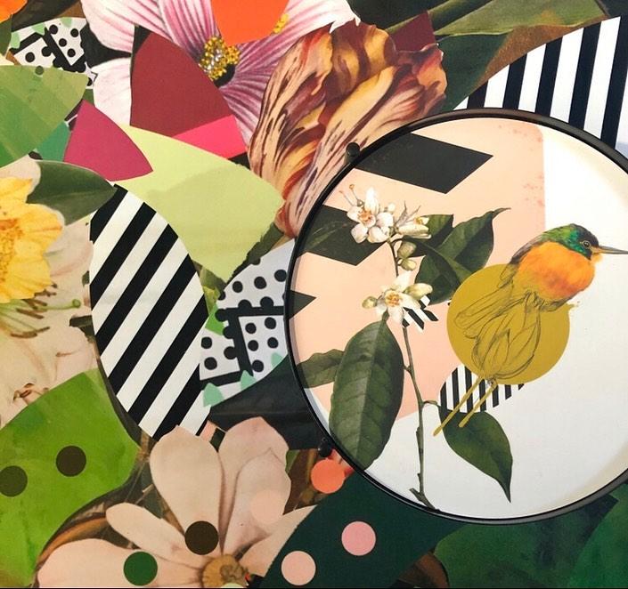 picture of Illustration-Leaf-Botany-Bird-Design-Spring-Plant-Branch-Pattern-28752-113632