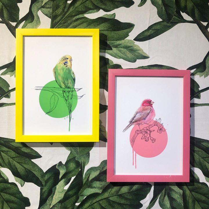 picture of Illustration-Leaf-Botany-Plant-Drawing-Picture frame-Art-Paper--1413641405463674