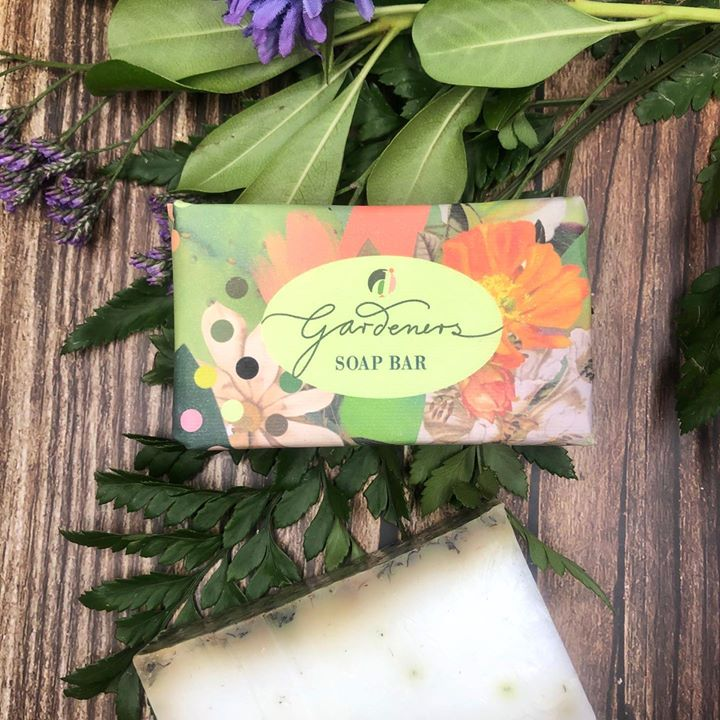 picture of Leaf-Flower-Plant-Party favor-Wedding favors-Wildflower-Cut flowers-Bouquet-Herb-1640147306146415
