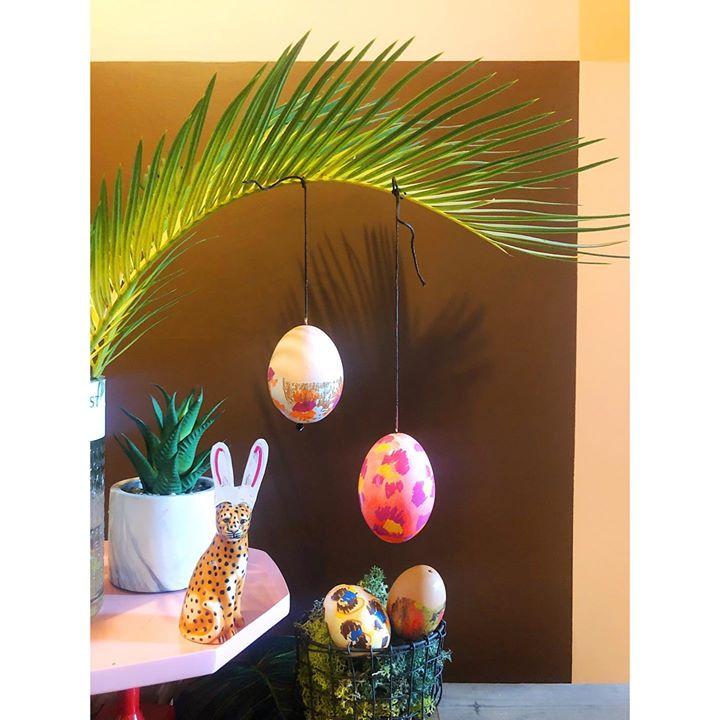 picture of Orange-Branch-Tree-Plant-Flowerpot-Interior design-Twig-Houseplant-Table-28328-66702