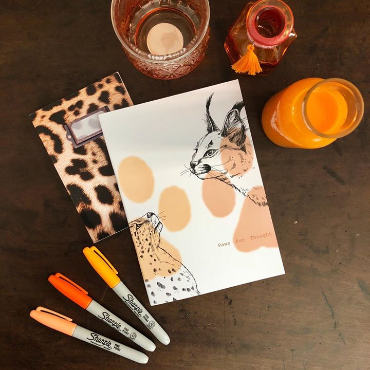picture of Orange-Placemat-Table-Plate-Tableware-Dishware-Illustration-Paper-Serveware-1486046624889818