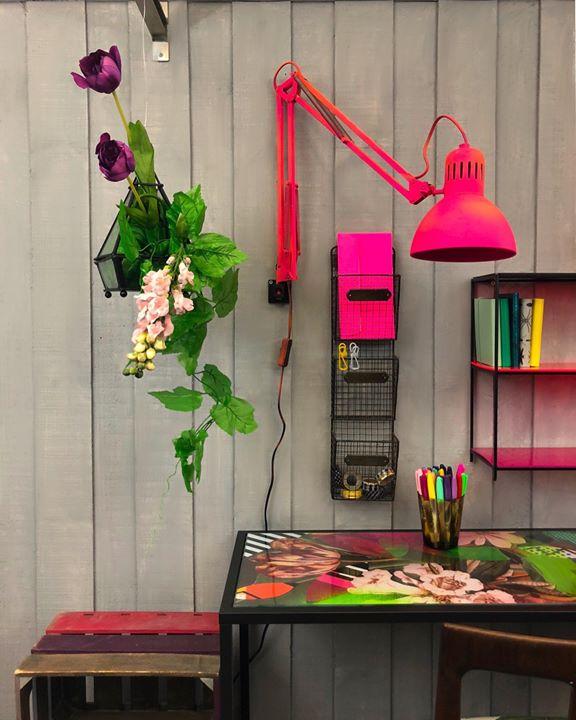 picture of Pink-Flower-Plant-Floral design-Room-Houseplant-Floristry-Magenta-Flowerpot-36441-64227