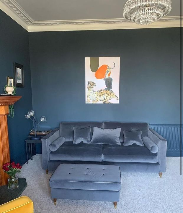 picture of Plant-Building-Interior design-studio couch-Lighting-Houseplant-Orange-Wood-Flowerpot-1850604258434051
