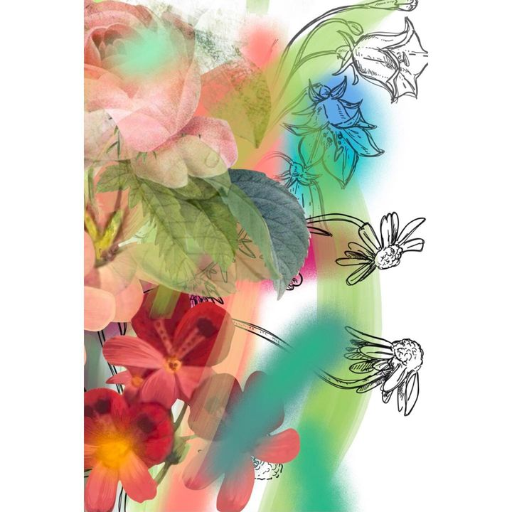 picture of Plant-Flower-Branch-Pollinator-Organism-Petal-Art-Twig-Feather-1810077195820091