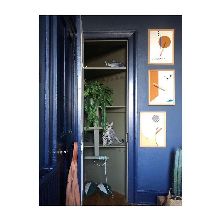 picture of Room-Fixture-Door-Home door-Handle-Door handle-Household hardware-Plywood-Cabinetry-1807364812757996