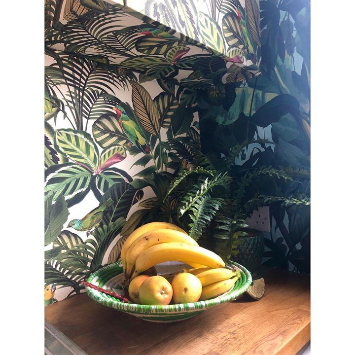 picture of Yellow-Tree-Food-Plant-Banana family-Still life-Banana-Fruit-Mural-1613901165437696